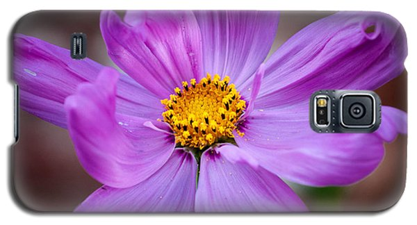 Cosmo Spring Flower Square Galaxy S5 Case