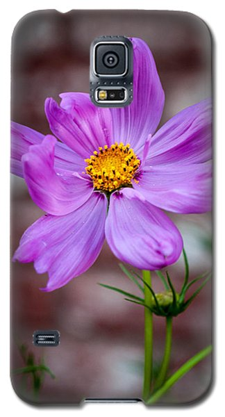Cosmo Spring Flower Vertical Galaxy S5 Case
