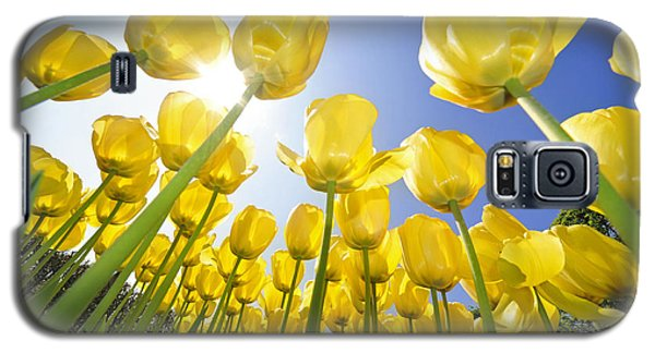 Spring Flowers 5 Galaxy S5 Case