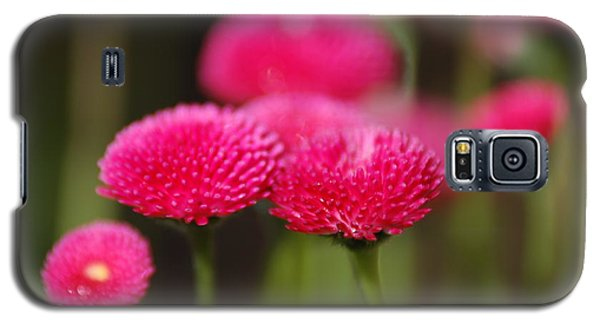 Galaxy S5 Case featuring the photograph Spring Flowers by Ron Roberts