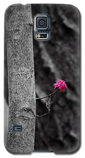 Spring Maple Growth Galaxy S5 Case