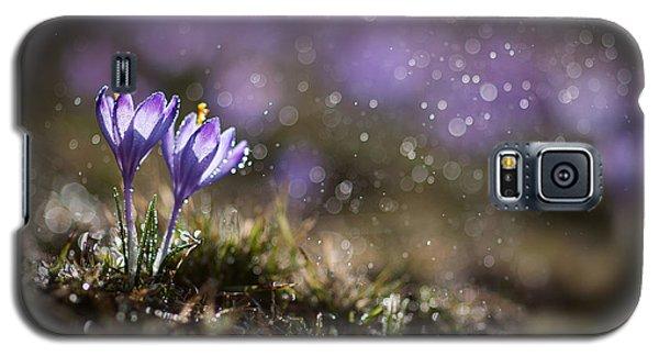 Spring Impression I Galaxy S5 Case