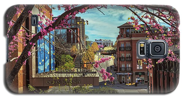 Spring In The Scenic City Galaxy S5 Case