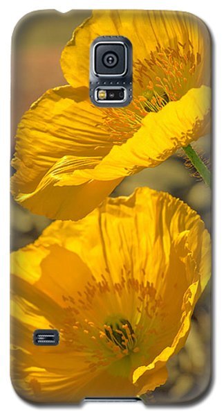 Galaxy S5 Case featuring the photograph Spring In Yellow by Rima Biswas