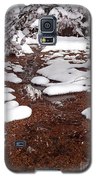 Galaxy S5 Case featuring the photograph Spring Into Winter by Kerri Mortenson