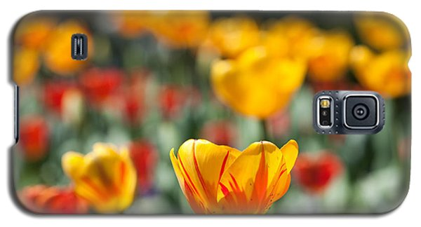 Spring Is Upon Us Galaxy S5 Case