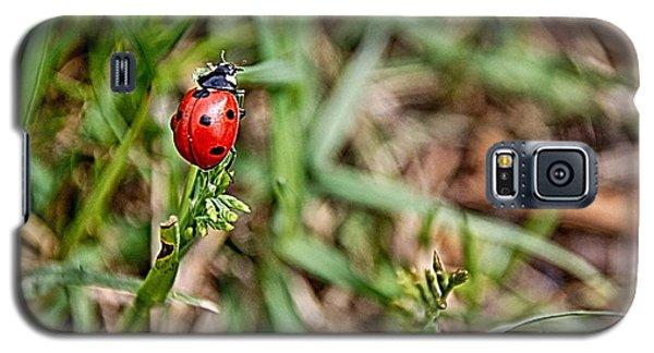 Spring Lady Galaxy S5 Case