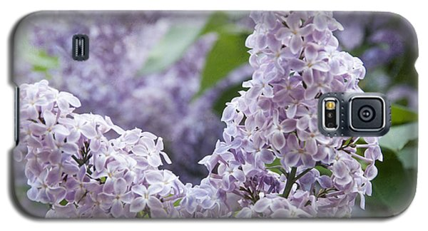 Spring Lilacs In Bloom Galaxy S5 Case