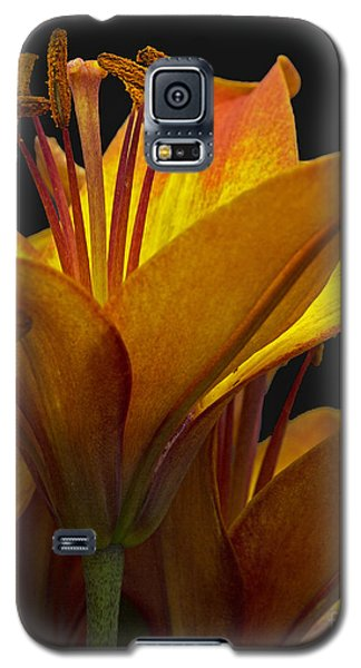 Galaxy S5 Case featuring the photograph Spring Lily by Robert Pilkington