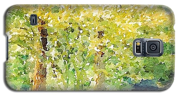 Sunny Galaxy S5 Case - Spring Maples by Anna Porter