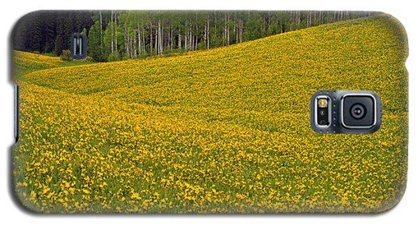 Spring Meadow Galaxy S5 Case
