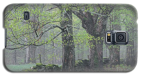 Galaxy S5 Case featuring the photograph Spring Mist by Alan L Graham