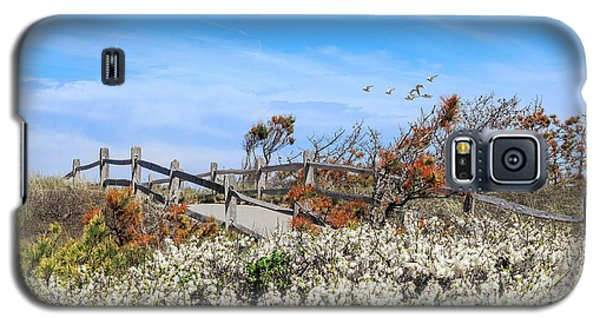 Spring On Cape Cod Galaxy S5 Case