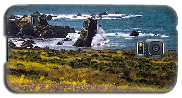 Spring On The California Coast By Denise Dube Galaxy S5 Case