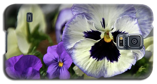 Spring Pansy Flower Galaxy S5 Case