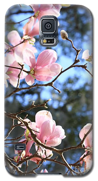 Saucer Magnolia Galaxy S5 Case - Spring Pink And Blue by Carol Groenen