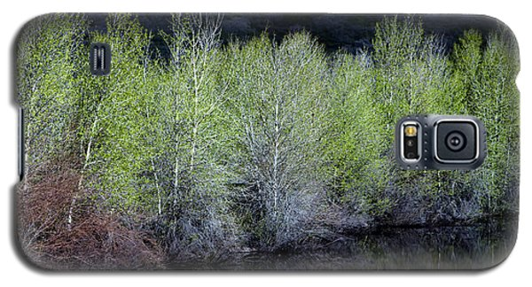 Galaxy S5 Case featuring the photograph Spring Pond by The Forests Edge Photography - Diane Sandoval