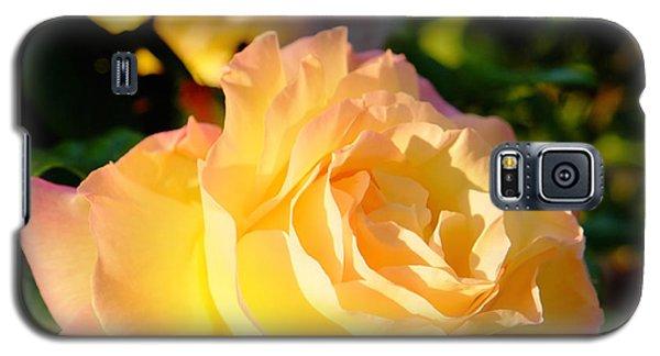 Spring Rose Galaxy S5 Case