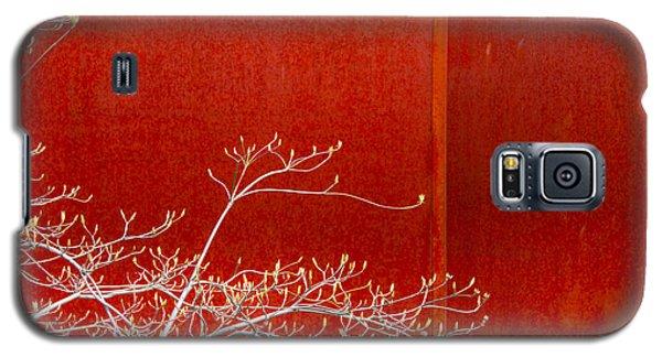 Spring Rust Galaxy S5 Case by Takeshi Okada