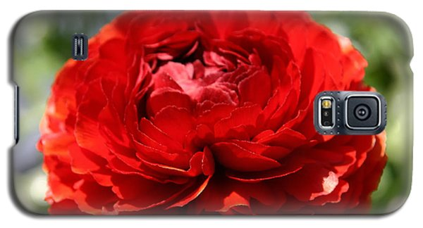 Spring Scarlet Double Begonia Galaxy S5 Case