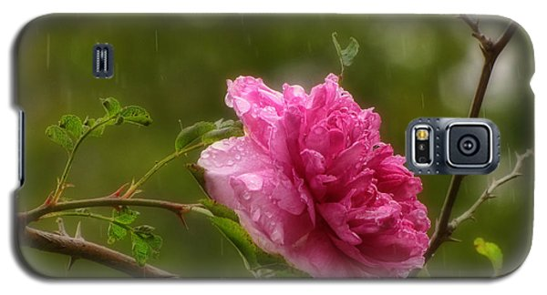 Spring Showers Galaxy S5 Case by Peggy Hughes