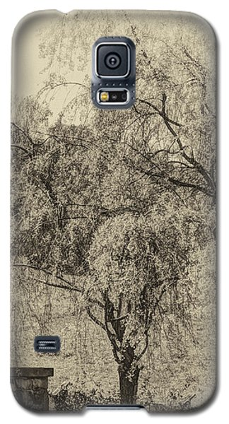 Galaxy S5 Case featuring the photograph Spring by Skip Tribby