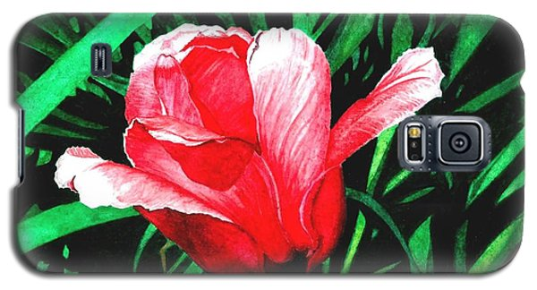 Galaxy S5 Case featuring the painting Spring Solo by Barbara Jewell