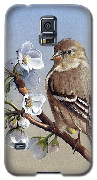 Galaxy S5 Case featuring the painting Spring Splendor by Mike Brown