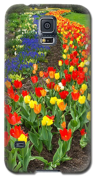 Spring Streaming By Galaxy S5 Case