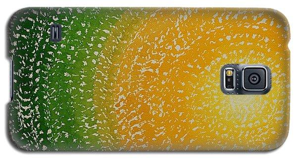 Spring Sun Original Painting Galaxy S5 Case