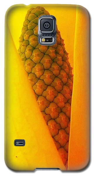 Spring Surprise Galaxy S5 Case by Karen Horn