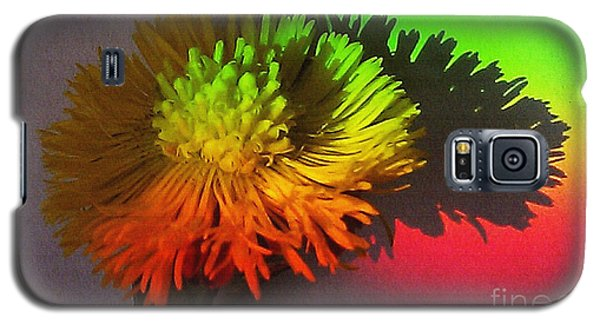 Galaxy S5 Case featuring the photograph Spring Through A Rainbow by Martin Howard