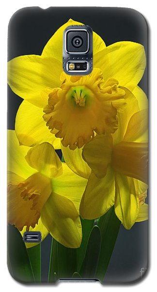 Galaxy S5 Case featuring the photograph Spring Trio by Robert Pilkington