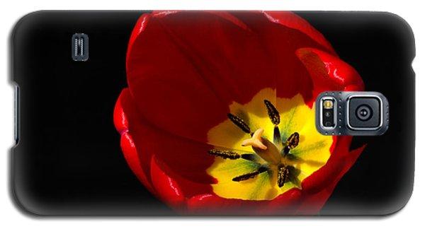 Spring Tulip 2 Galaxy S5 Case