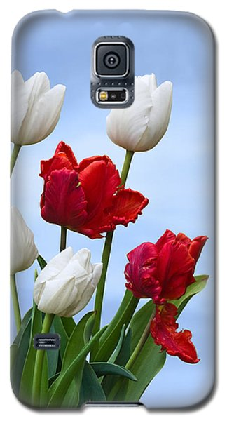 Spring Tulips Galaxy S5 Case by Jane McIlroy