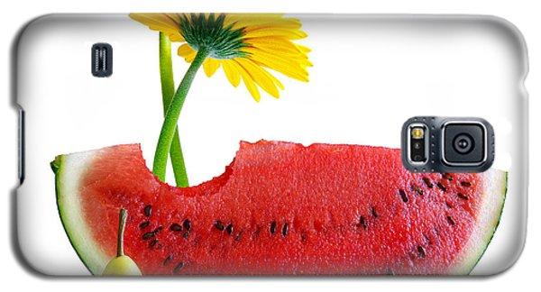 Watermelon Galaxy S5 Case - Spring Watermelon by Carlos Caetano
