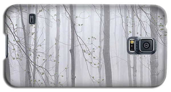 Galaxy S5 Case featuring the photograph Spring Woodland Fog 1 by Alan L Graham