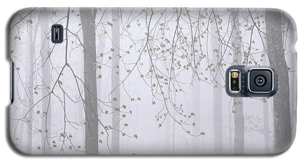 Spring Woodland Fog 2 Galaxy S5 Case