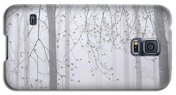 Galaxy S5 Case featuring the photograph Spring Woodland Fog 2 by Alan L Graham