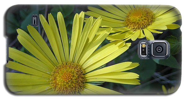 Galaxy S5 Case featuring the photograph Spring Yellow  by Cheryl Hoyle