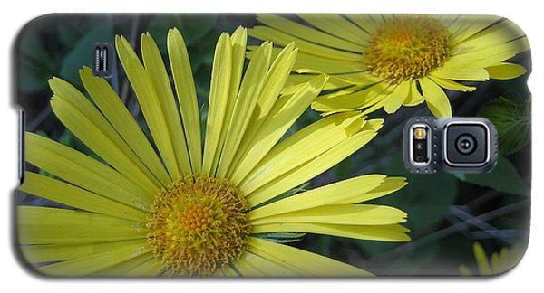 Spring Yellow  Galaxy S5 Case