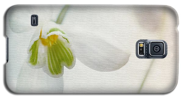Springflower Galaxy S5 Case