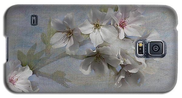 Springtime Galaxy S5 Case by Anne Rodkin