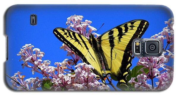 Springtime Beauty Galaxy S5 Case