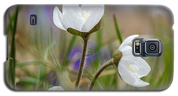 Springtime Blossom Galaxy S5 Case by Kennerth and Birgitta Kullman