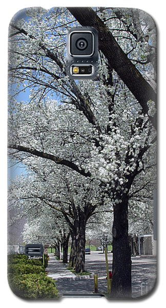 Galaxy S5 Case featuring the photograph Springtime Corning Ny 2 by Tom Doud