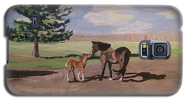 Springtime Foal Galaxy S5 Case