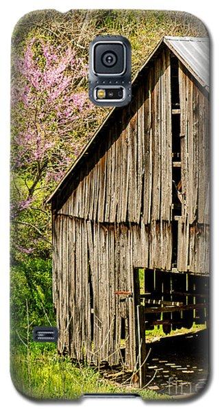 Springtime In Kentucky Galaxy S5 Case
