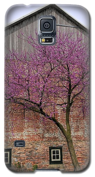 Galaxy S5 Case featuring the photograph Springtime In Lancaster County by Dan Myers