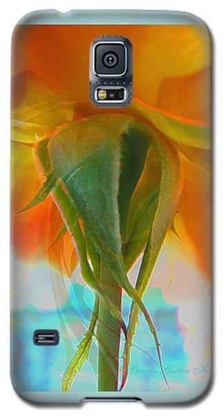Spring In Summer Galaxy S5 Case by Brooks Garten Hauschild